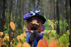 Witch in wood. The girl in a suit of a witch in wood royalty free stock photos