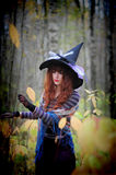 Witch in wood. The girl in a suit of a witch in wood royalty free stock photo