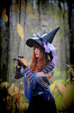 Witch in wood. The girl in a suit of a witch in wood stock photos