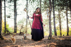 Witch in the wood. Practicing magic. Stock Images