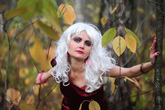 Witch in the woods on Halloween Royalty Free Stock Images