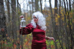 Witch in the woods on Halloween Stock Photography