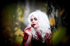 Witch in the woods on Halloween Stock Image