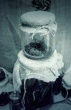Witchcraft και φίδι Στοκ φωτογραφία με δικαίωμα ελεύθερης χρήσης