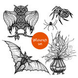 Witchcraft Doodle Set. With hand drawn owl spider and pot  vector illustration Stock Image