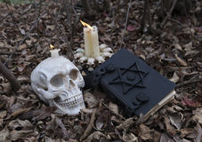 Witchcraft in the forest. Black magic in the forest. Scary human skull with evil candles and black book with pentagram. Image for Halloween day, desaturated and Stock Image