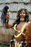 Witchdoctor do tribo Zulu na vila tradicional perto de Durban Foto de Stock Royalty Free