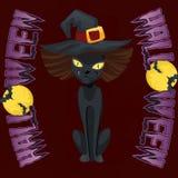 Witcher do gato preto Imagem de Stock Royalty Free