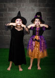 Witches bad faces Royalty Free Stock Images