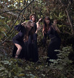 Witches in dark forest Stock Photos