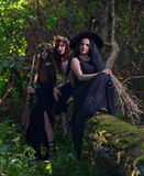 Witches in dark forest Stock Images