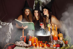 Witches look into the book Royalty Free Stock Images