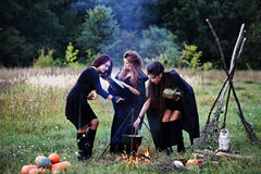 Witches preparing a potion. In the forest Royalty Free Stock Photo