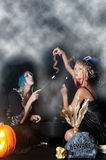 Witches with Snake. Beautiful young women witches with a snake and a jack-o-lantern Royalty Free Stock Images