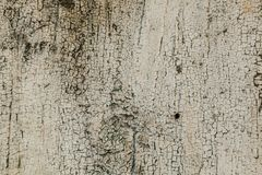 wite特写镜头细节崩裂了在生锈的金属墙壁上的油漆 免版税库存照片