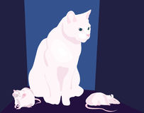 Wite animals. White cat and two white rats Stock Image