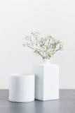 Wite-gipsophila in einem weißen Vase Lizenzfreies Stockbild