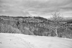 Witer山风景13 免版税图库摄影