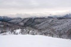 Witer山风景14 图库摄影