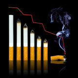 With Each Cigarette Graph Of Your Life Go To End Royalty Free Stock Image