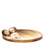 WithBackground предпосылки с гайками диска и дерева ши с маслом Конусы handplatter и сосны акварели с гайками стоковая фотография rf