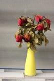 Wither è aumentato, morto rosa in vaso fotografie stock