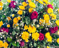 Wither flowers Royalty Free Stock Photos
