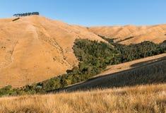 Wither-Hügel in Blenheim, Südinsel, Neuseeland Stockbilder