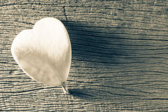 Wither heart shaped leaf Stock Photo