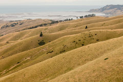 Wither Hills. South Island, New Zealand Royalty Free Stock Photos