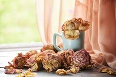 Withered завяло бутоны роз и лепестков Стоковое фото RF