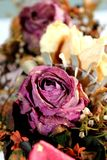 Withered bouquet Royalty Free Stock Images