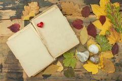 Withered leaves on the old wooden board. Autumn comfort. Place for your text. Stock Photo