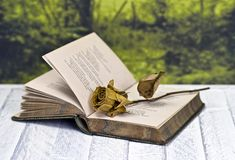 Withered rose on book. Vintage poetry book with dead rose; lying on table against countryside background Royalty Free Stock Image
