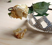 Withered rose and crown. A dried white rose and a sequined crown Royalty Free Stock Photo