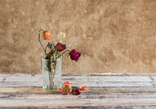 Withered rose in glass on art dark background Royalty Free Stock Photos