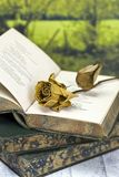 Withered rose on poetry book. Vintage poetry book with dead rose; lying on table against countryside background stock photos