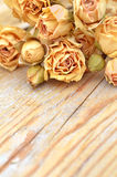 Withered rose on wooden background Stock Image