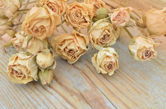 Withered rose on wooden background Stock Photography