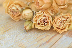 Withered rose on wooden background Royalty Free Stock Images