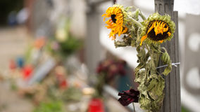 Withered Sunflowers and candles on the road Royalty Free Stock Photos