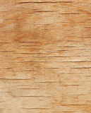 Withered wooden texture flecked with cracks Royalty Free Stock Photos