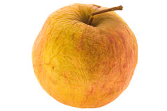 Withering apple Stock Images