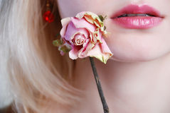 Withering rose Royalty Free Stock Photography