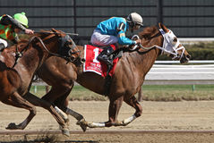 Withgreatpleasure Wins The Ruffian Stakes Stock Photo