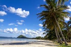 Witka piaska byka bieg plaża zdjęcia stock