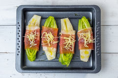 Witlof with prosciutto and  mozzarella Royalty Free Stock Photography