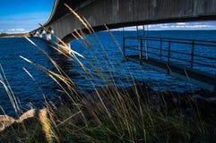 Witn du nord magique Finlande de frontière de la Suède image libre de droits
