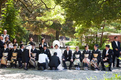 świętowanie ślub japoński tradycyjny Obraz Stock