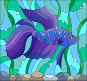 Witraż ilustracja z błękitną bój ryba Zdjęcia Royalty Free